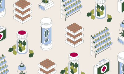 Colourful illustration showing symbols of healthcare, the Red Cross and DNA structure