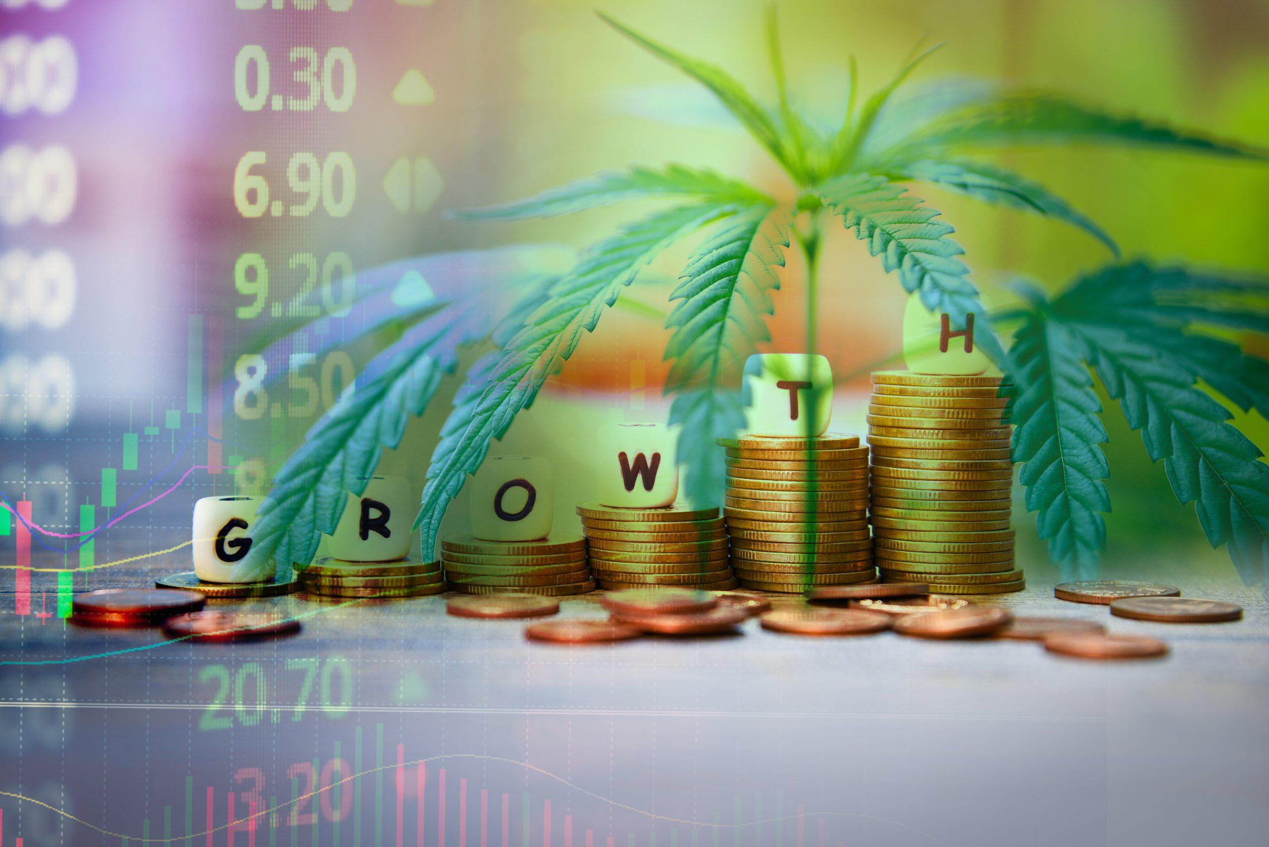 Cannabis industry growth