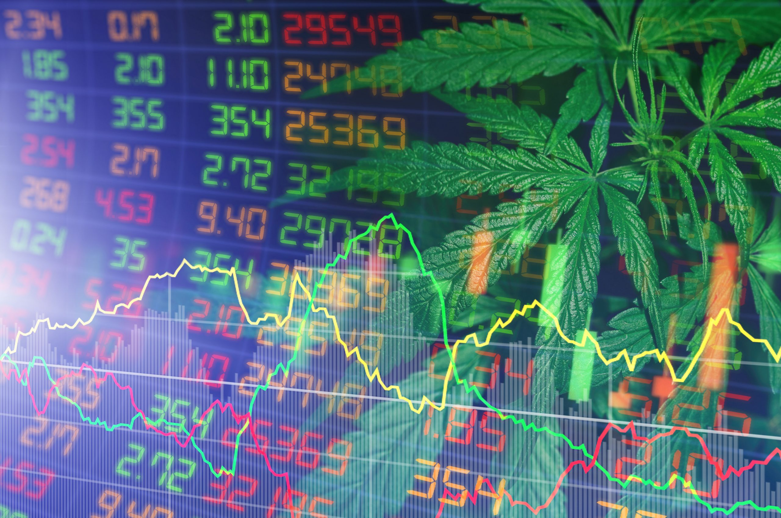 Cannabis investment graphic